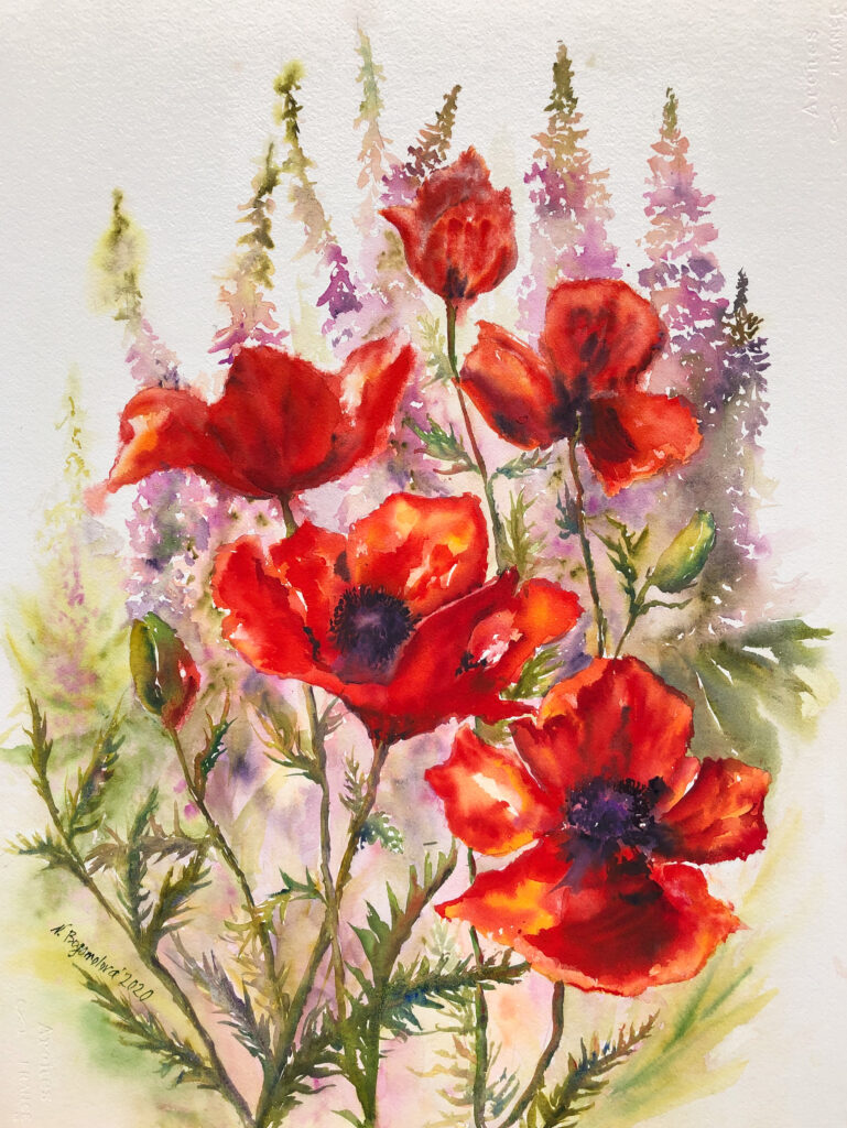 poppies flowers painting  Bouquet watercolor red flowers photo picture