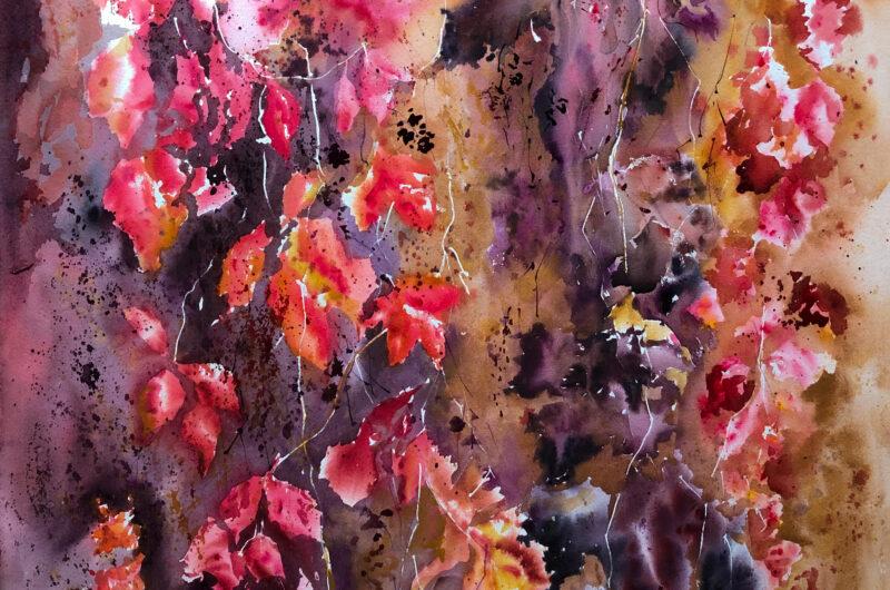wild grapes golden autumn